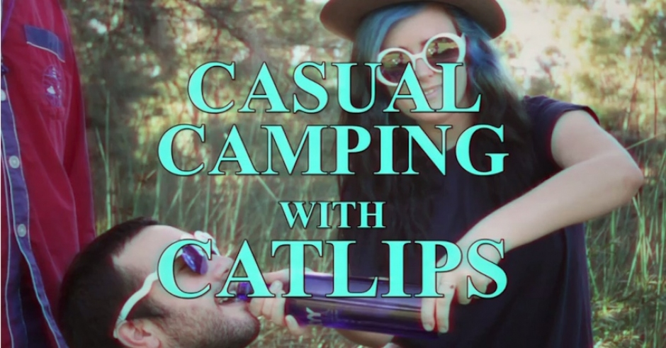 Casual Campings Tips With Catlips