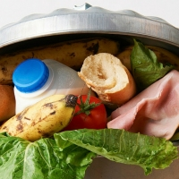 Previous article: A handy guide on lessening your food waste impact
