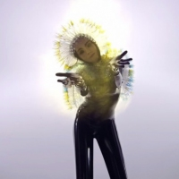 Previous article: Watch: Björk - Lionsong