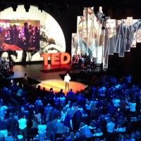 Previous article: The perfect TED Talk for every Life Situation