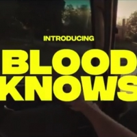 Previous article: Premiere: The Flower Drums' Leigh Craft launches dreamy new solo project, Blood Knows