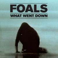 Previous article: Watch: Foals - What Went Down