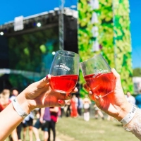 Next article: The Kite String Tangle, Touch Sensitive, Sneaky Sound System join Wine Machine