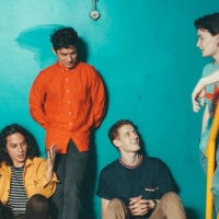 Previous article: Listen: Last Dinosaurs - Evie