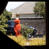 Previous article: Ruin your childhood with a horror version of Sesame Street