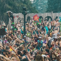 Next article: Some Feelings & Photos From Shambhala Festival