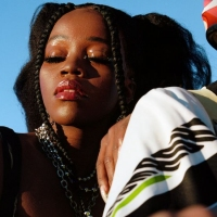 Previous article: Australia gains a young Missy Elliott with Tkay Maidza's new single, Shook