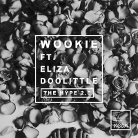 Next article: New: Wookie - The Hype 2.0 feat. Eliza Doolittle (cln Remix)