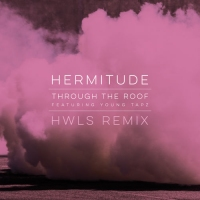 Previous article: New Music: Hermitude - Through The Roof feat. Young Tapz (HWLS Remix)